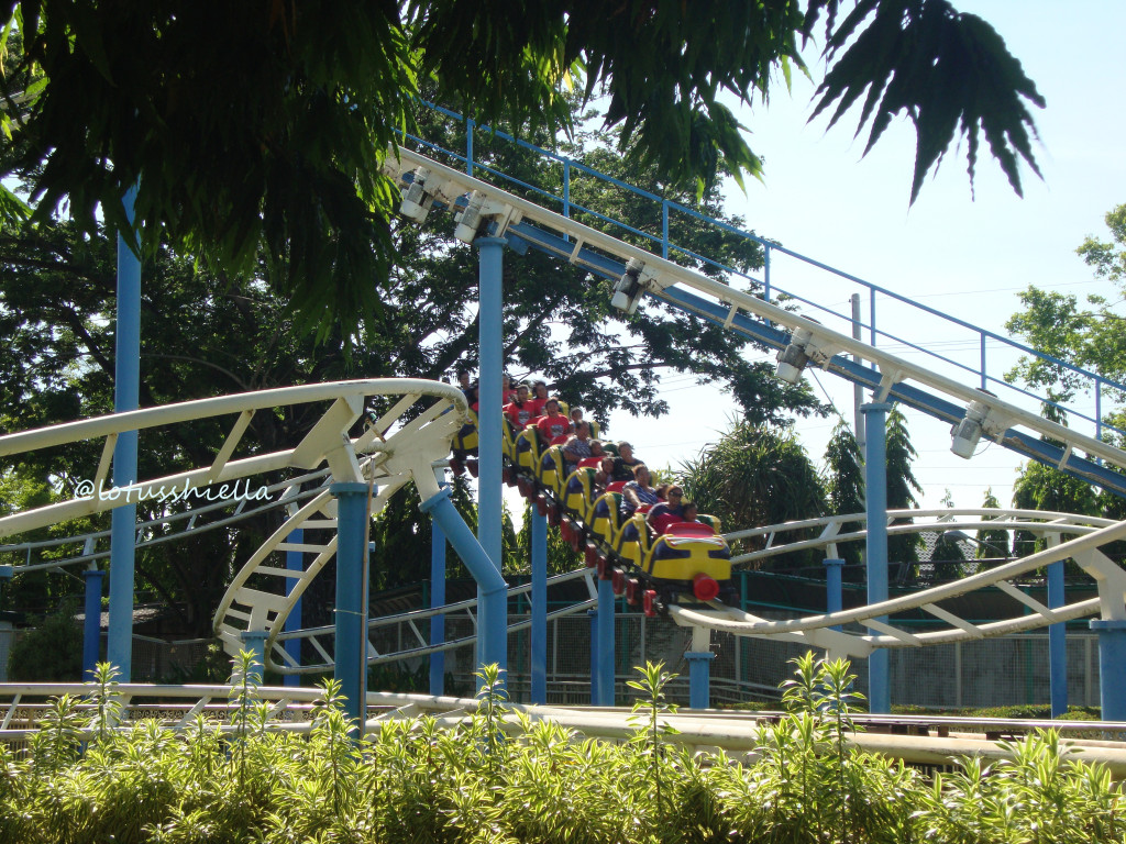 EnchantedKingdom_RollerSkater