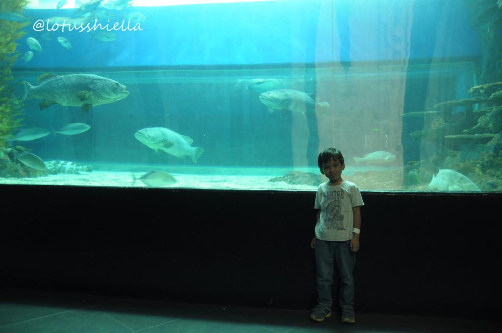 ManilaOceanPark_Oceanarium3