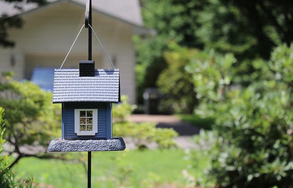 maxpixel-birdhouse