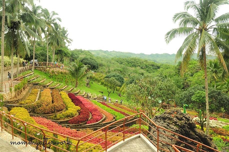 Cebu Safari_Mayana