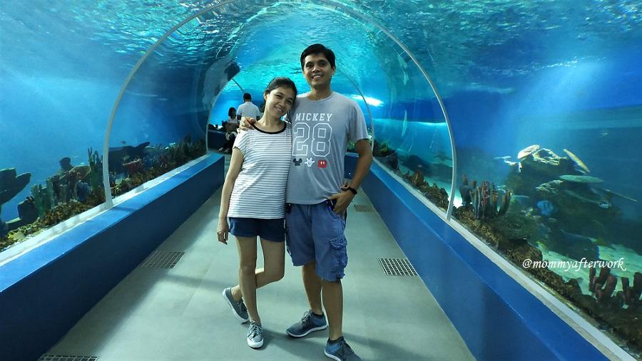 Cebu Ocean Park Oceanarium